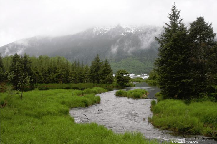 Golden-Princess-Juneau-Mendenhall-Glacial-River.png
