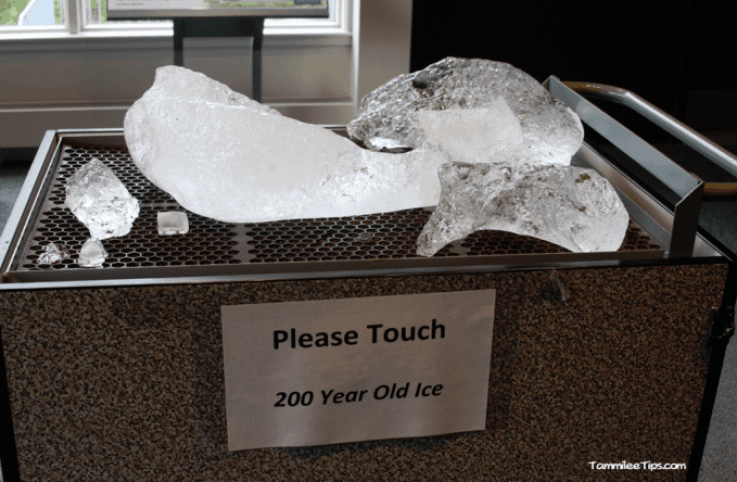 Golden-Princess-Juneau-Mendenhall-Glacier-Visitor-Center-Glacial-Ice.png