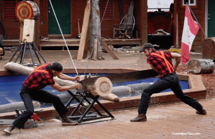 Golden-Princess-Ketchikan-Great-Alaskan-Lumber-Jack-Show-Competition.png