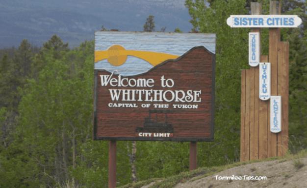 Golden-Princess-Skagway-Drive-to-Yukon-White-Hores.png