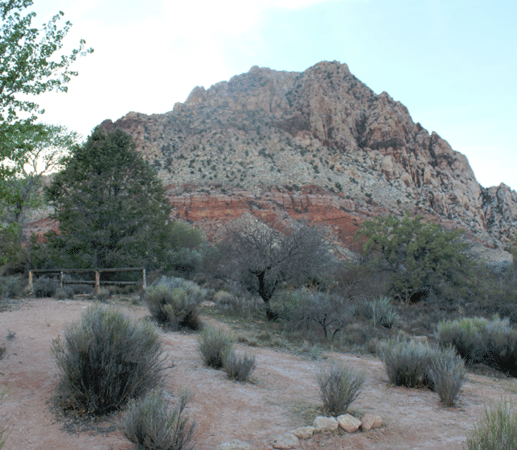 Our visit to Spring Mountain Ranch just outside of Las Vegas