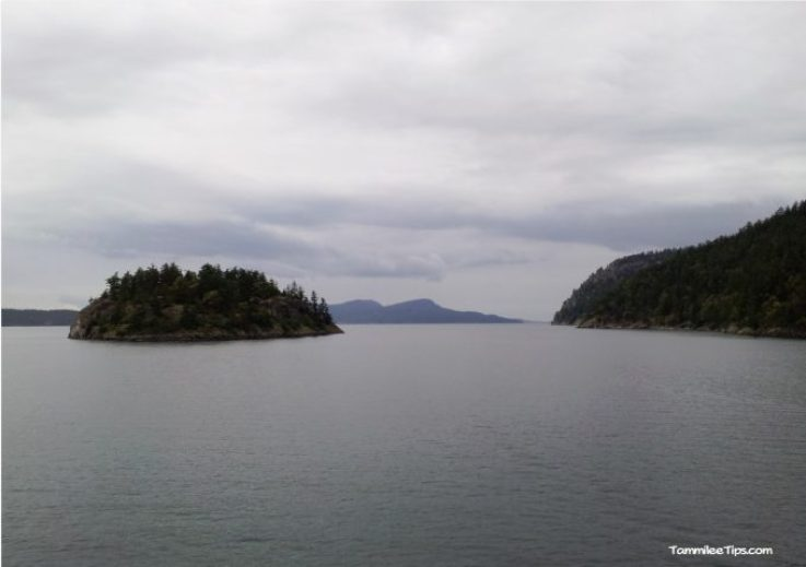 Washington State Ferry 4