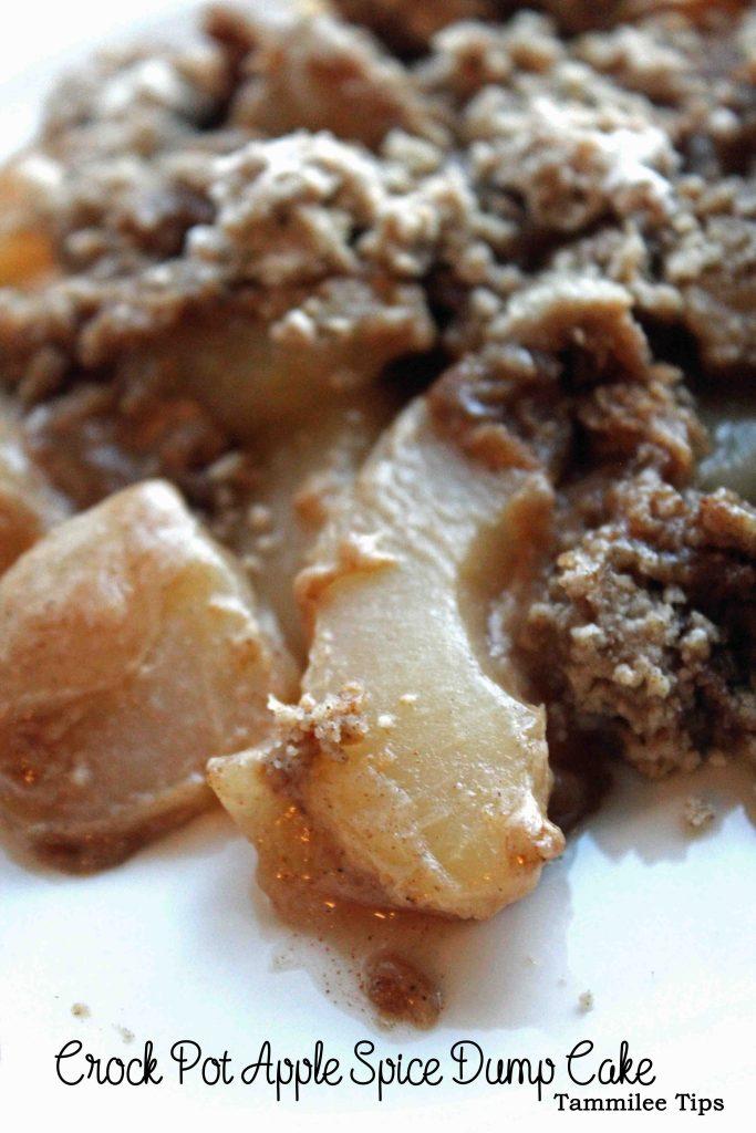 Crock Pot Apple Spice Dump Cake Recipe