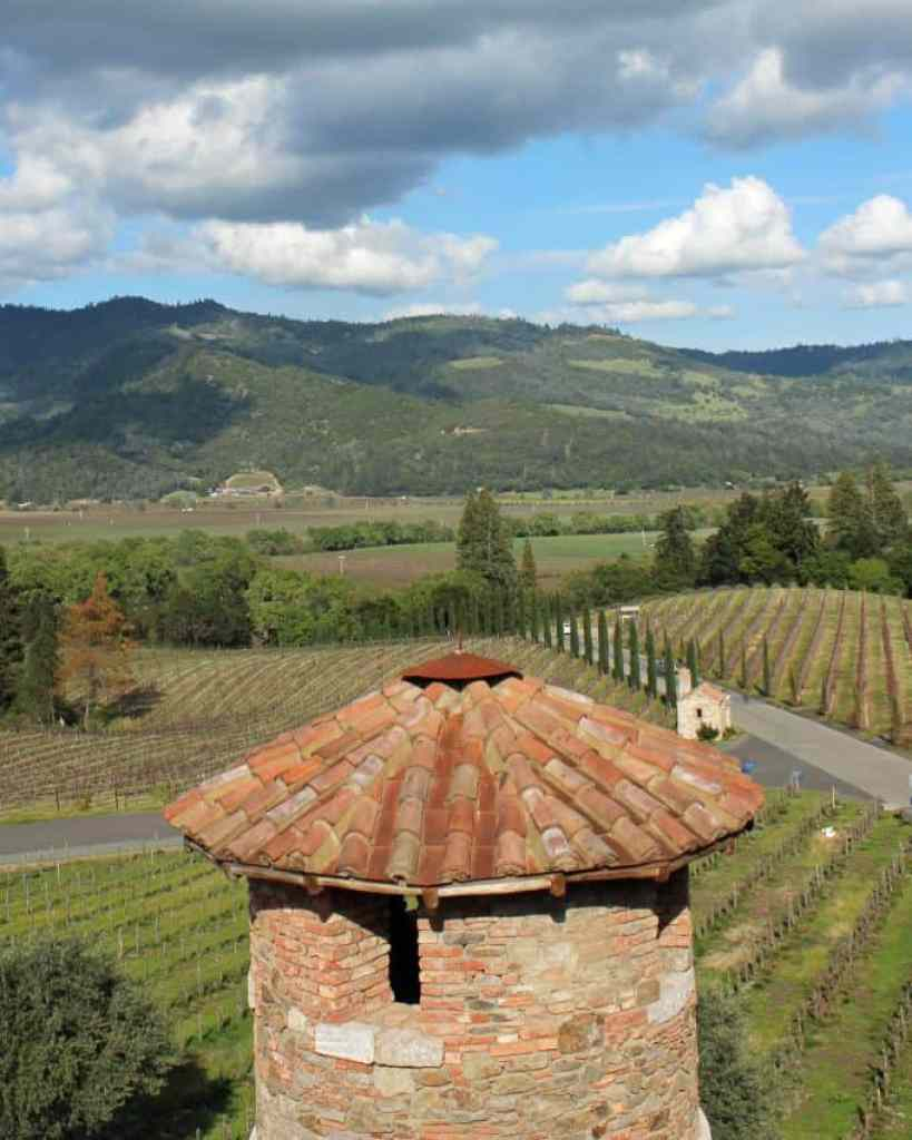 overlooking vineyard from castle tower