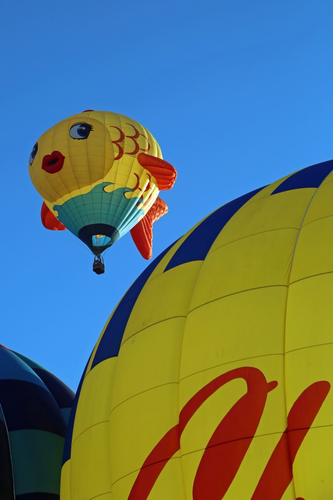 Mass Ascension at the Reno Hot Air Baloon Race