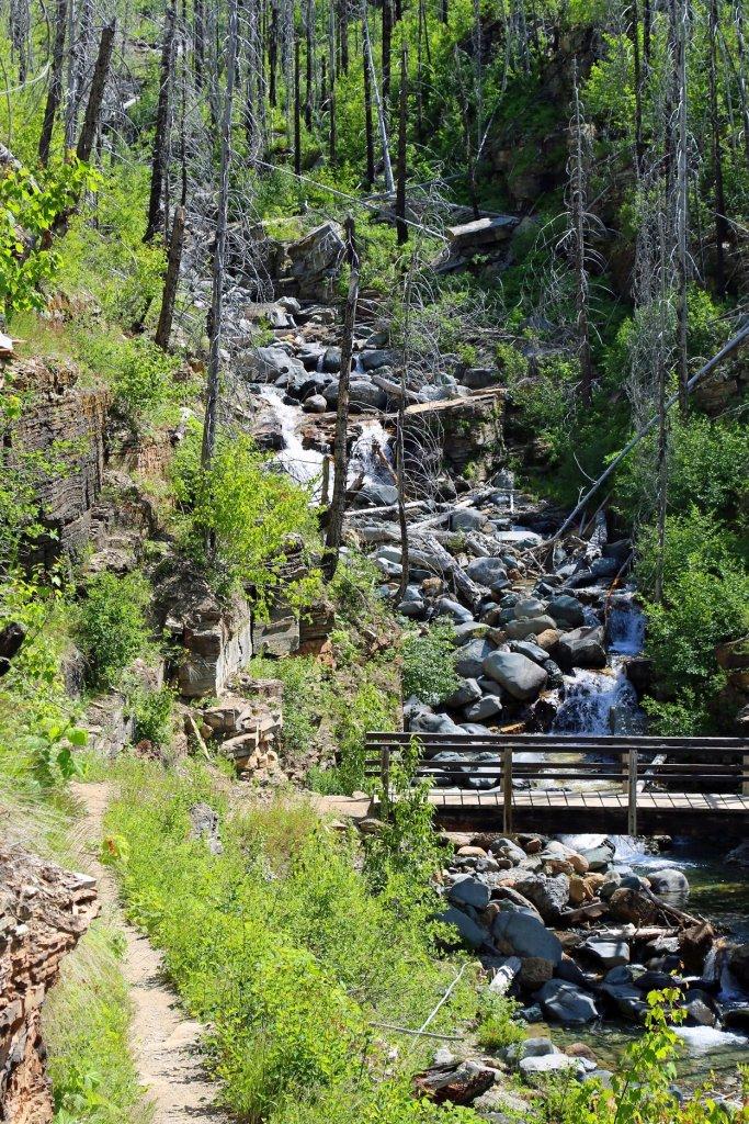 Bridge on the Loop Trail Glacier National Park