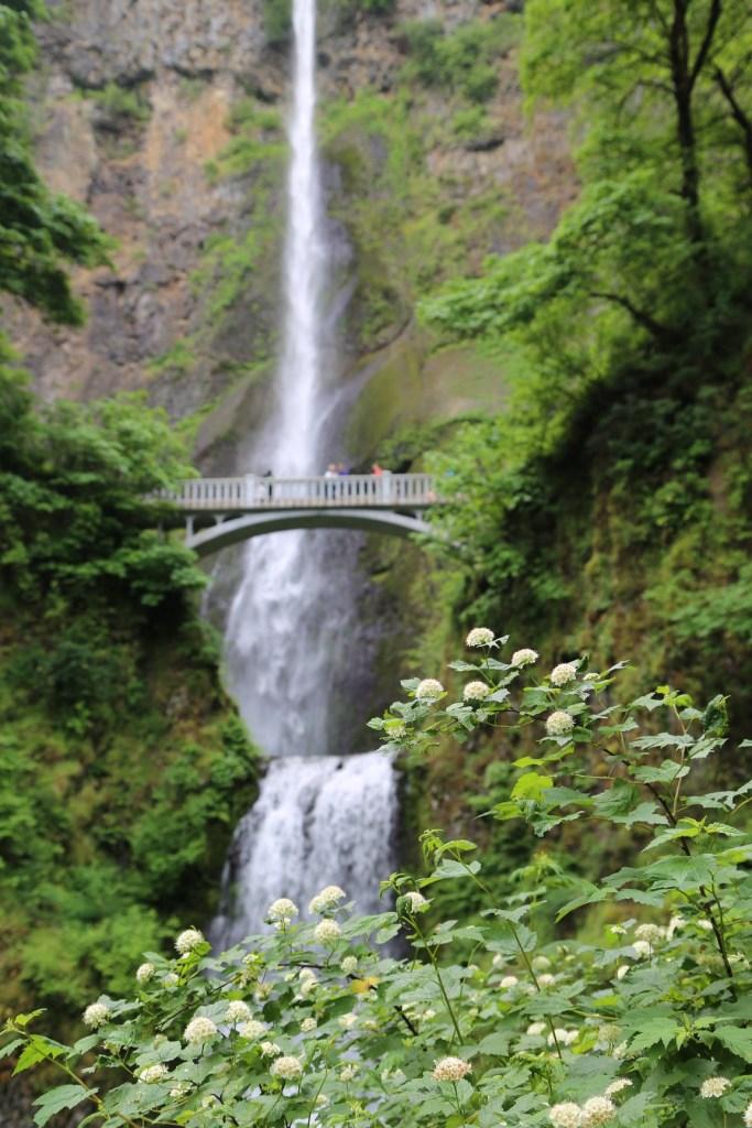 Mulnomah Falls near Portland Oregon