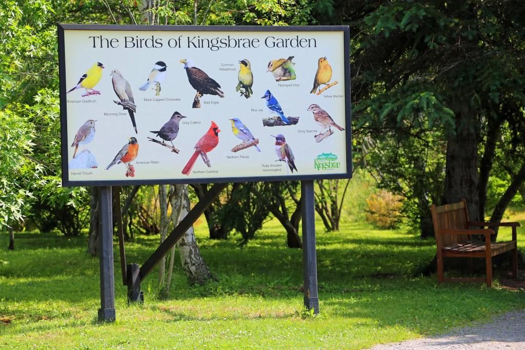 Birds of Kingsbrae Gardens