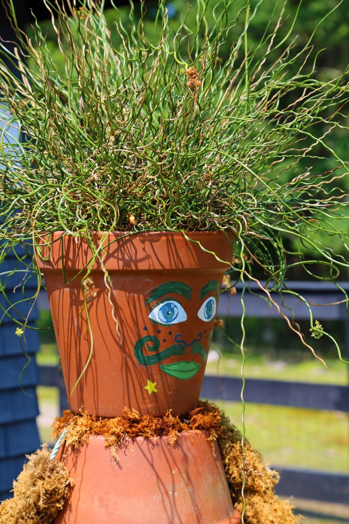 mr pot at kingsbare gardens