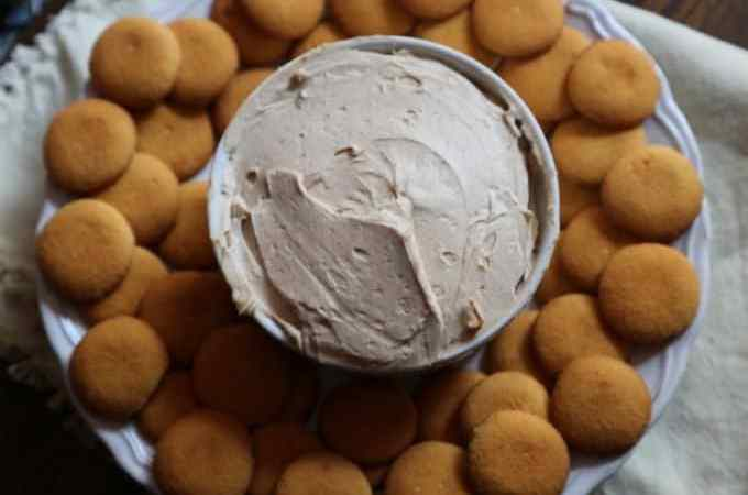 Pumpkin Pie Cheesecake Dip Recipe