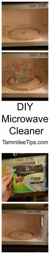 DIY Microwave Cleaner