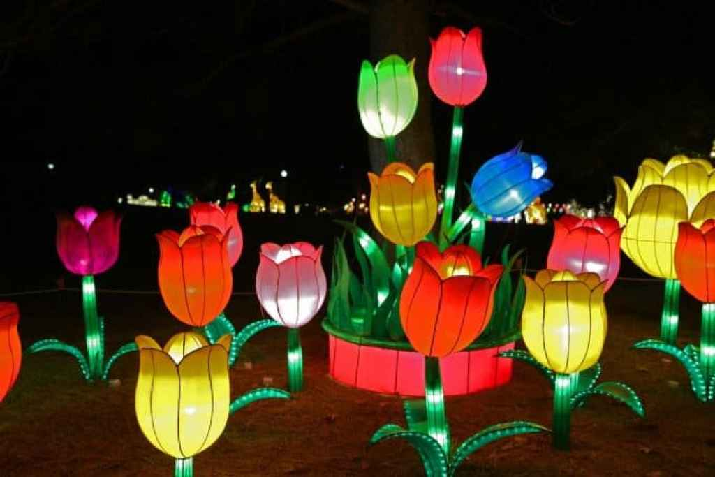 Flowers-and-Chinese-Lantern-Festival-Spokane.jpg