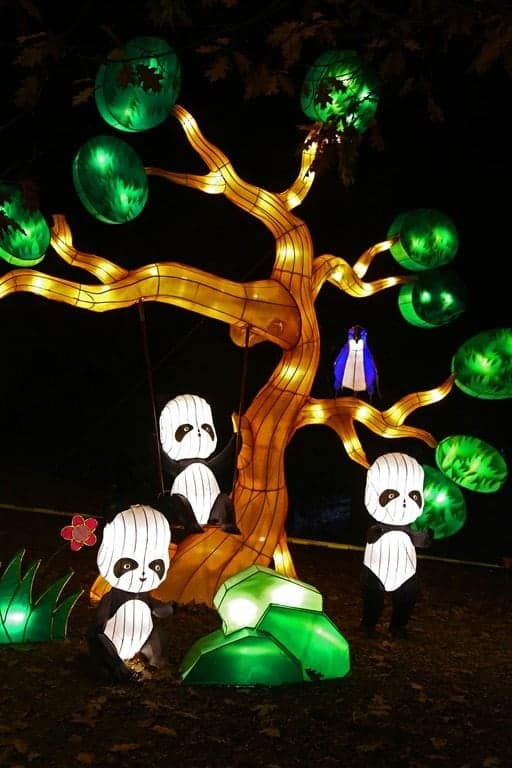 Panda-swinging-in-tree-Chinese-Lantern-Festival-Spokane.jpg