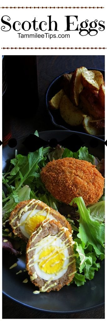 Make something new for breakfast, lunch or dinner with this easy Scotch Egg Recipe!