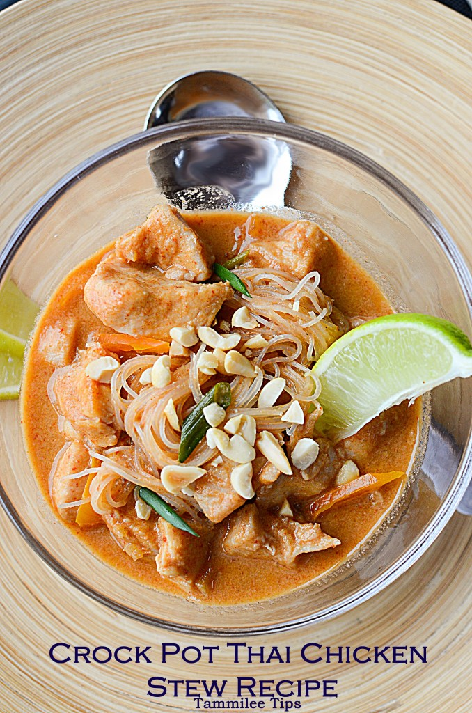 Crock Pot Thai Chicken Stew Recipe
