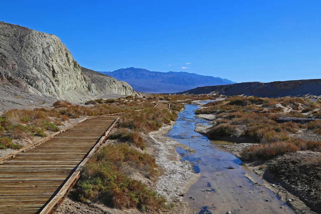 Salt Creek Interpretative Trail Death Valley National Park
