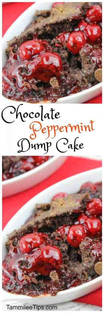 Super easy to make Chocolate Peppermint Dump Cake! Make in the crockpot or the oven.