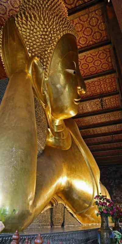 What to expect when visiting Wat Pho Reclining Buddha Temple in Bangkok Thailand #bangkok #thailand #buddha #watpho