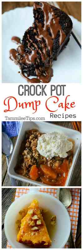 Crock Pot Dump Cake Recipes including cherry, apple, pumpkin, chocolate and more so easy to make in the slow cooker.