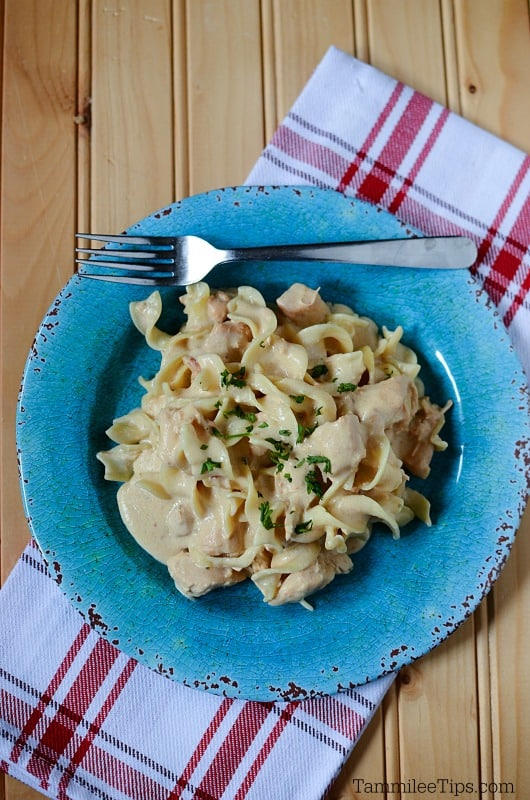 Super easy Crock Pot Chicken Stroganoff