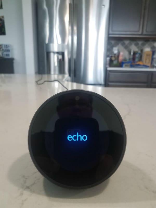 Amazon Echo Spot from Best Buy! - Tammilee Tips