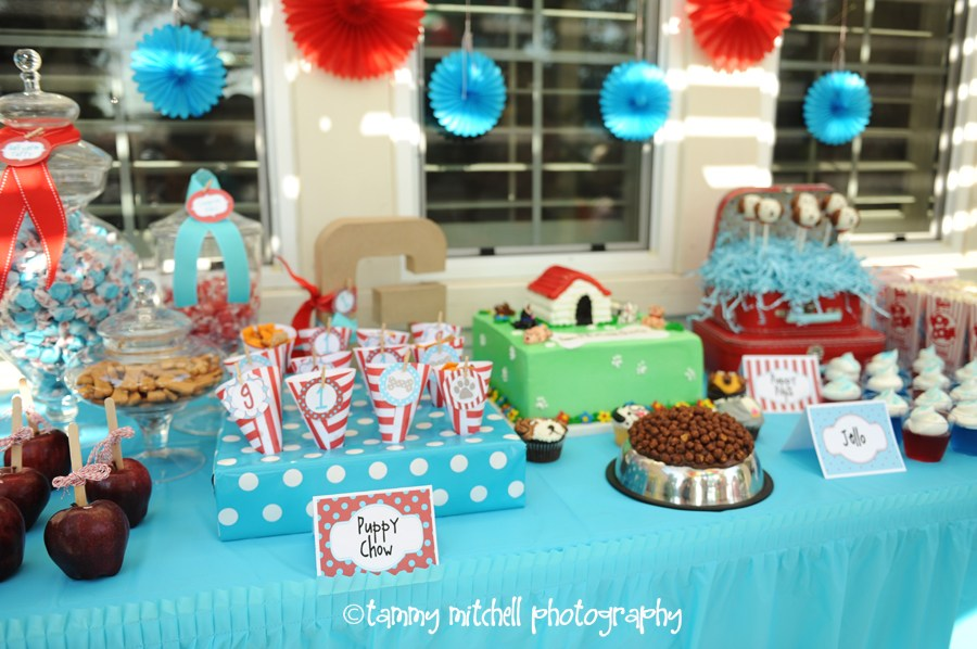 Puppy Dog First Birthday Party Idea by Tammy Mitchell