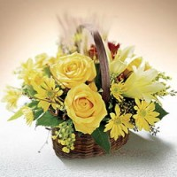 Autumn Beauty from Tammys Floral
