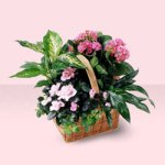 Pink Assortment from Tammys Floral