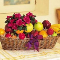 Plant and Fruit Basket from Tammys Floral