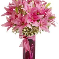 Pretty Pink Lilies from Tammys Floral