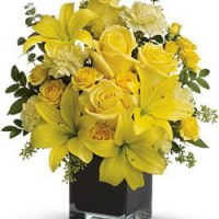 Ray of Sun from Tammys Floral
