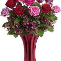 Ruby Nights from Tammys Floral