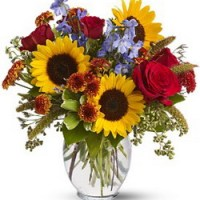 Sunny Skies from Tammys Floral
