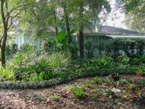 Florida_Friendly Landscaping