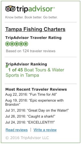 tripadvisor-large