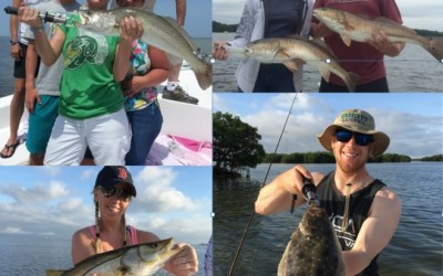 Tampa Fishing Charters Inc. Early Spring Fishing Report