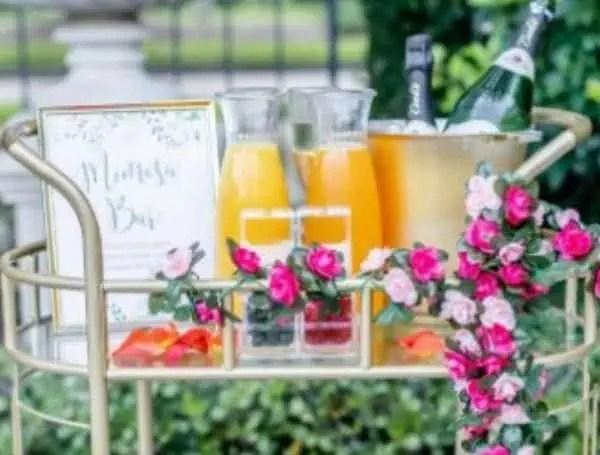 mimosa mavens tampa pasco polk hernando
