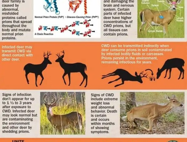 prevent chronic wasting from entering florida
