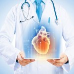 Lab Grown Hearts – We are almost there!