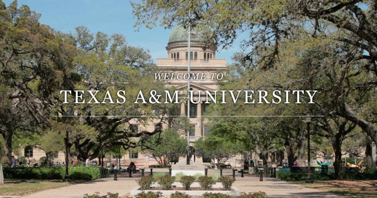 Texas a&m college essay requirements