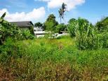 TJCG145 - Tanah dijual ( Land for sale ) di Canggu Bali 05