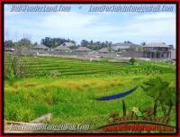 TANAH di CANGGU BALI DIJUAL 1.450 m2 view sawah, laut dan gunung