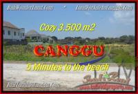 DIJUAL MURAH TANAH di CANGGU BALI Untuk INVESTASI TJCG165