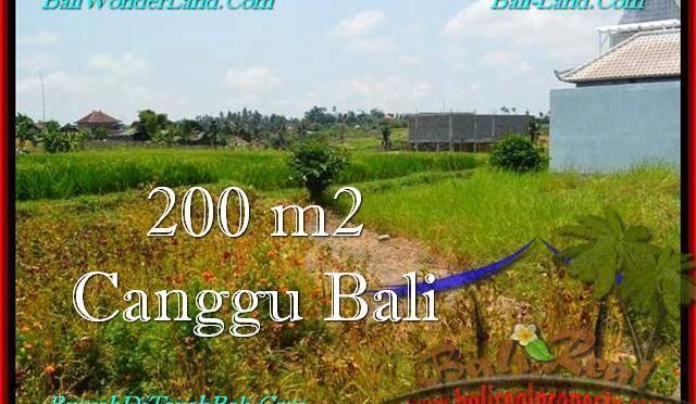 JUAL MURAH TANAH di CANGGU BALI 2 Are View sawah, lingkungan villa