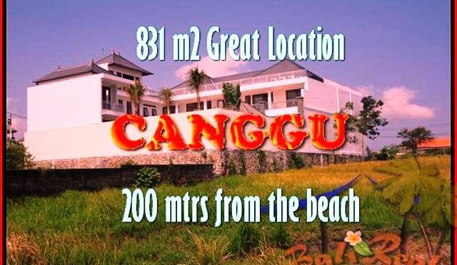 TANAH DIJUAL di CANGGU BALI 831 m2 lingkungan villa