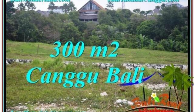 JUAL MURAH TANAH di CANGGU BALI Untuk INVESTASI TJCG205