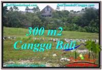 JUAL MURAH TANAH di CANGGU 300 m2 di Canggu Umalas
