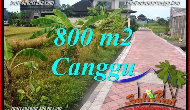 DIJUAL TANAH MURAH di CANGGU BALI 8 Are di Canggu Brawa