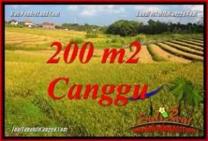 TANAH di CANGGU JUAL 2 Are VIEW SAWAH, LINGKUNGAN VILLA