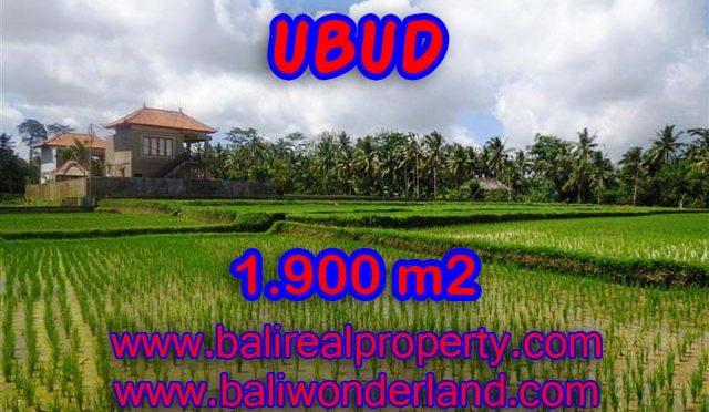 Tanah di Bali dijual 1.900 m2 di Dekat sentral Ubud